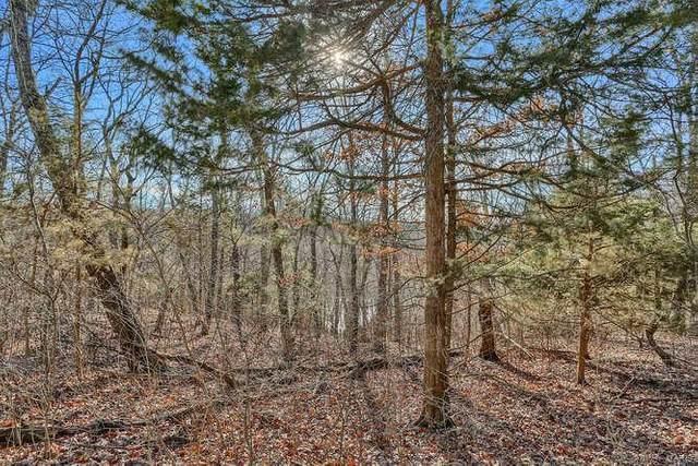 19 Lot D Sunrise Hills Sub, Labadie, MO 63055 (#21020123) :: RE/MAX Vision