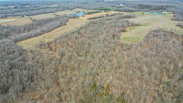 175 Buechele Road, New Florence, MO 63363 (#21021480) :: Clarity Street Realty