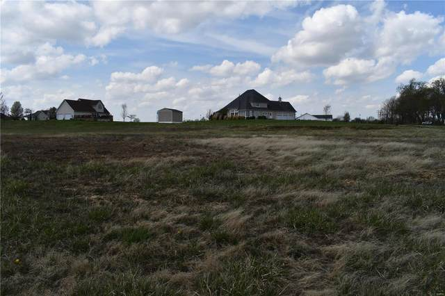 1 Royal Oak Lane, Montgomery City, MO 63361 (#21021606) :: The Becky O'Neill Power Home Selling Team