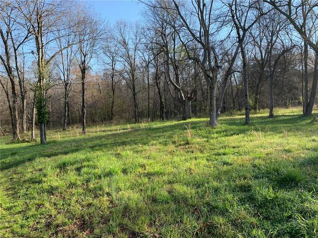0 142 East, Oxly, MO 63955 (#21022032) :: Parson Realty Group