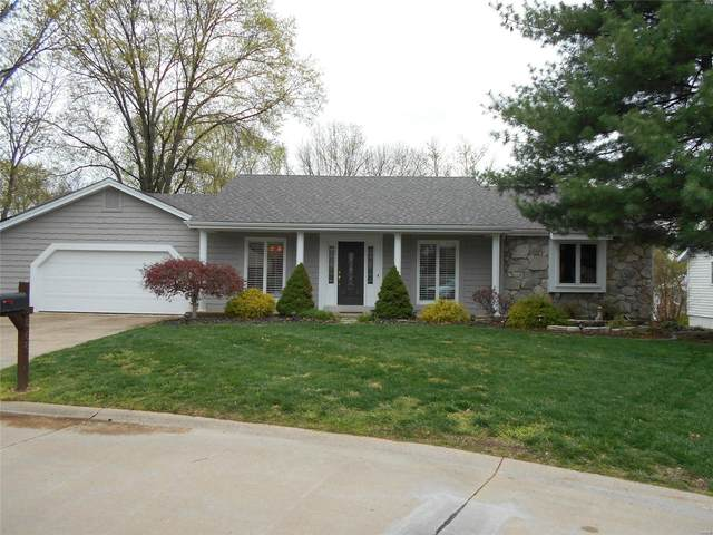15687 Iron Lake Court, Chesterfield, MO 63017 (#21022573) :: Kelly Hager Group | TdD Premier Real Estate