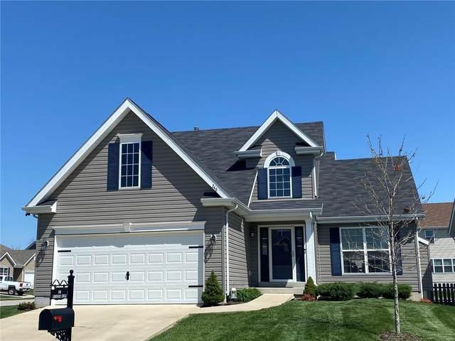 248 Longridge Circle, Belleville, IL 62221 (#21022604) :: Fusion Realty, LLC
