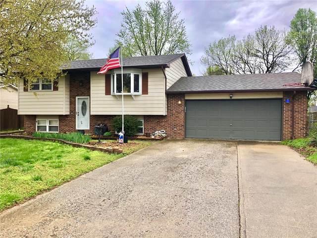 5112 Sheila Drive, Granite City, IL 62040 (#21022882) :: Reconnect Real Estate