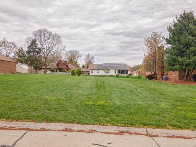 117 Moonglow Drive, Belleville, IL 62221 (#21023773) :: Tarrant & Harman Real Estate and Auction Co.