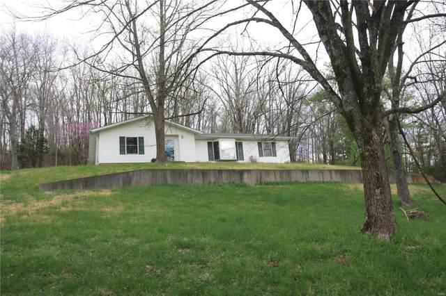306 Ridgeview Drive, Piedmont, MO 63957 (#21024012) :: Clarity Street Realty