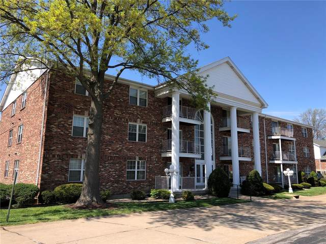 4309 Sunridge Drive G, St Louis, MO 63125 (#21024019) :: Tarrant & Harman Real Estate and Auction Co.