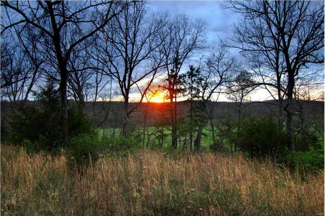 0 Tbd White Creek Road, Mountain Grove, MO 65711 (#21024021) :: Matt Smith Real Estate Group