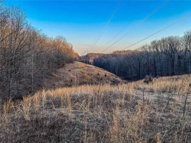 0 County Road 4150, Salem, MO 65560 (#21025174) :: Kelly Hager Group   TdD Premier Real Estate