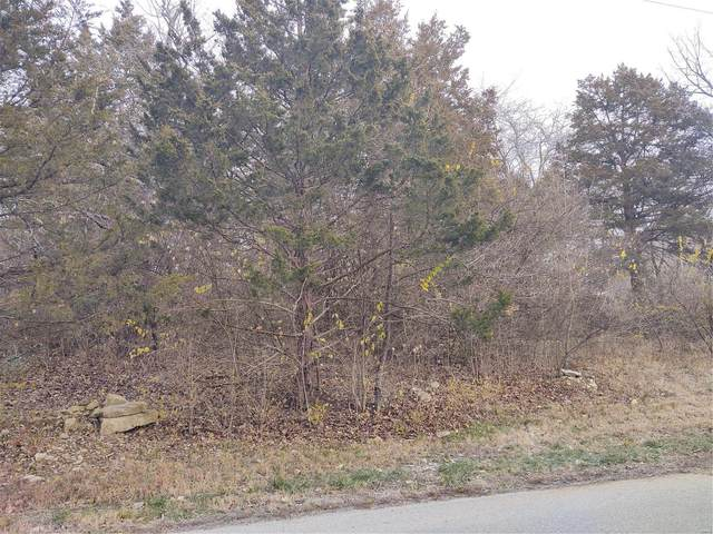 0 Lot 38 Fernwood, House Springs, MO 63051 (#21026047) :: Parson Realty Group