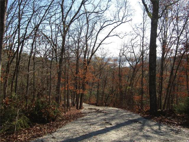 0 State Highway Dd, Branson, MO 65737 (#21026105) :: Parson Realty Group