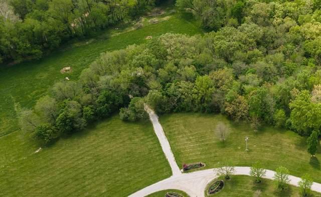 3325 Deer Run Lane Lane, Moscow Mills, MO 63362 (#21026272) :: Reconnect Real Estate