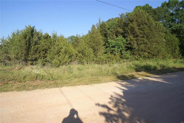 421 Old Prairie Rd., Cadet, MO 63630 (#21026704) :: Parson Realty Group