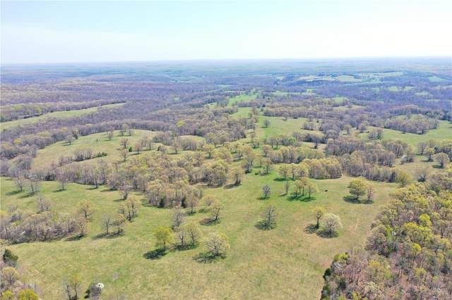 310 Woolsey Road, Steelville, MO 65565 (#21026890) :: The Becky O'Neill Power Home Selling Team
