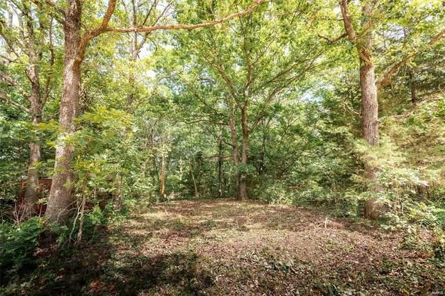 22320 County Road 7670 Tract 5, Newburg, MO 65550 (#21026972) :: Matt Smith Real Estate Group