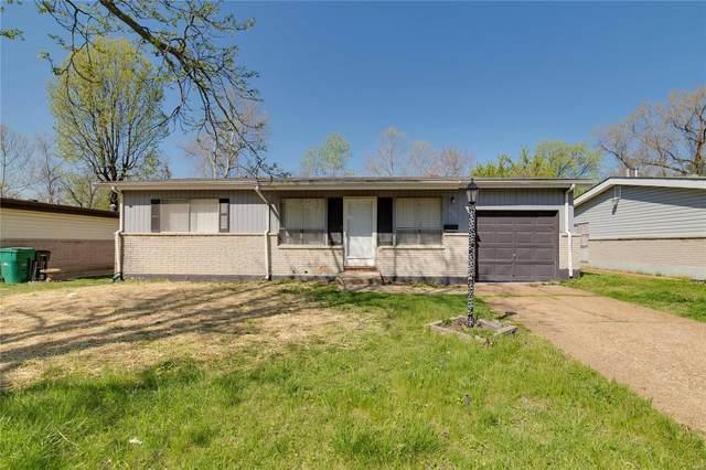 10241 Cedarhurst Drive, St Louis, MO 63136 (#21027223) :: Clarity Street Realty
