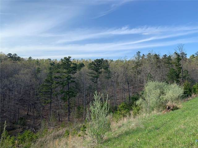 0 Hwy. 67 South Of N, Fredericktown, MO 63645 (#21027821) :: The Becky O'Neill Power Home Selling Team