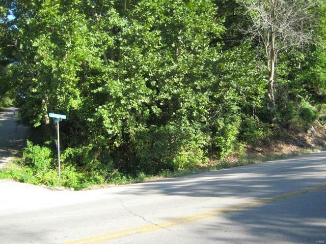 0 Veterans (Hwy E ) Drive, De Soto, MO 63020 (#21028696) :: Jenna Davis Homes LLC