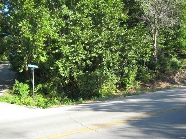 0 Veterans (Hwy E ) Drive, De Soto, MO 63020 (#21028696) :: Clarity Street Realty