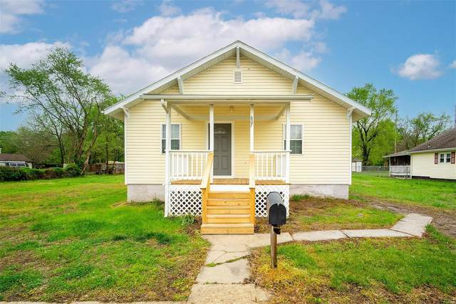 807 Dewitt Street, De Soto, MO 63020 (#21028808) :: Krista Hartmann Home Team