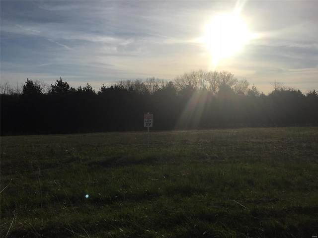 2210 Liberty Crossing Trail, Hillsboro, MO 63050 (#21029380) :: Clarity Street Realty