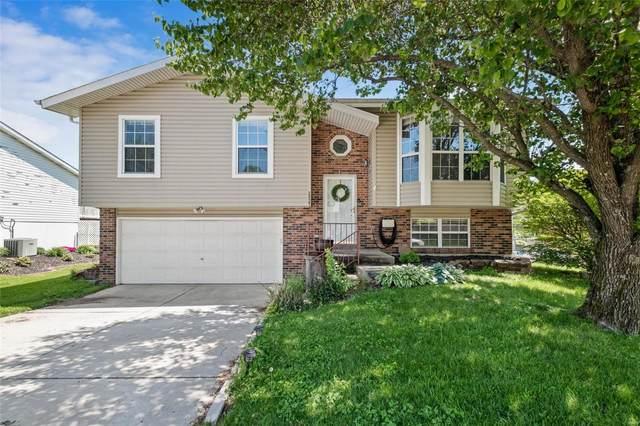 2927 Shelley Lynn, Arnold, MO 63010 (#21030187) :: PalmerHouse Properties LLC