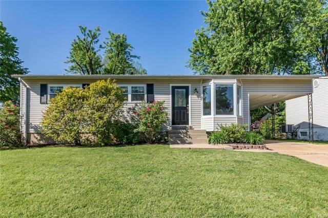 4110 Malus Drive, St Louis, MO 63125 (#21030344) :: Parson Realty Group