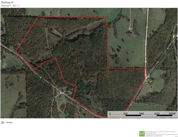 14180 State Highway H, Edgar Springs, MO 65462 (#21030362) :: Parson Realty Group