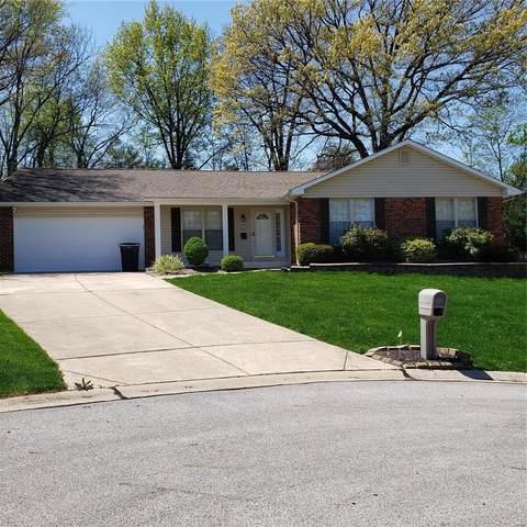 11 Pin Oak Court, Saint Peters, MO 63376 (#21030401) :: Parson Realty Group