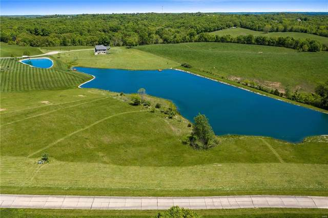 1 Eagle Crest Court, Winfield, MO 63389 (#21031666) :: Parson Realty Group
