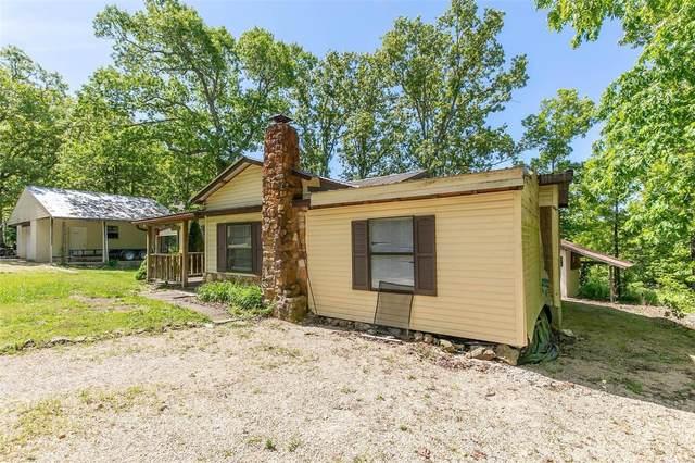 215 Lakeview Drive, Wappapello, MO 63966 (#21031878) :: Matt Smith Real Estate Group