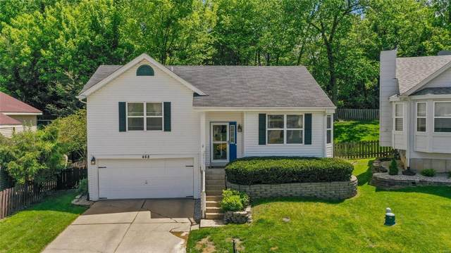 468 Steton Hall Court, Valley Park, MO 63088 (#21031903) :: Parson Realty Group