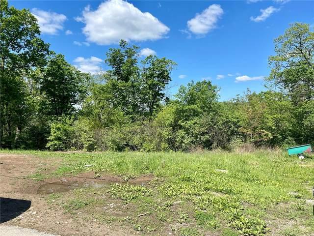 4575 Springview Drive, House Springs, MO 63051 (#21031943) :: PalmerHouse Properties LLC