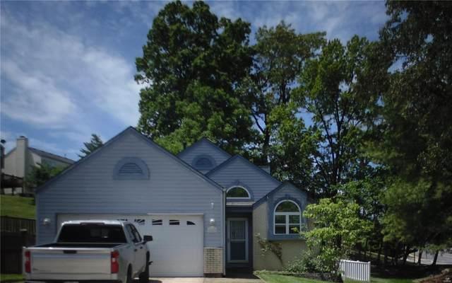651 Cascade Lake Drive, Ballwin, MO 63021 (#21032371) :: PalmerHouse Properties LLC
