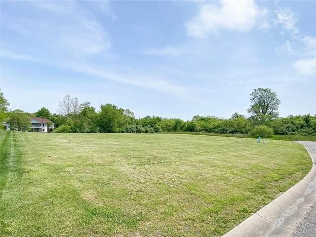 2796 Scenic Lake Drive, New Athens, IL 62264 (#21032839) :: Hartmann Realtors Inc.