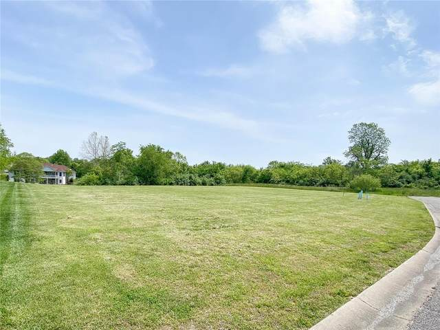 2796 Scenic Lake Drive, New Athens, IL 62264 (#21032839) :: Parson Realty Group