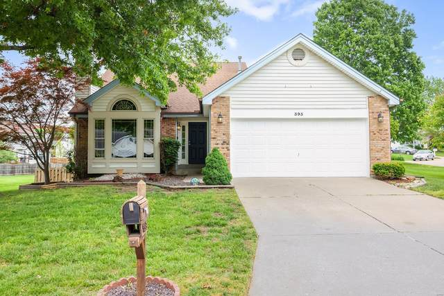 393 Misty Valley Drive, Saint Peters, MO 63376 (#21033612) :: Parson Realty Group
