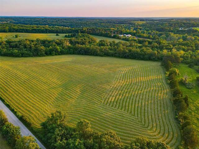 0 Burlage Road, Lonedell, MO 63060 (#21033809) :: The Becky O'Neill Power Home Selling Team