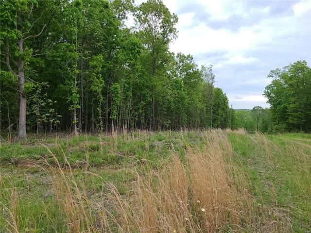 0 Pine Meadow Trail, Raymondville, MO 65555 (#21036706) :: Delhougne Realty Group