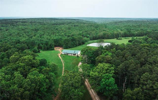 13001 Highway 17, Plato, MO 65552 (#21037225) :: RE/MAX Professional Realty