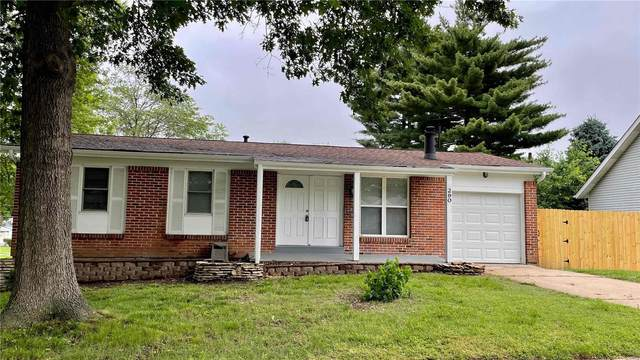 290 Birchlawn Drive, Florissant, MO 63033 (#21037811) :: Parson Realty Group