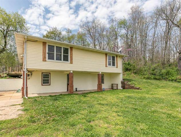 618 Carter 247, Doniphan, MO 63935 (#21038333) :: The Becky O'Neill Power Home Selling Team