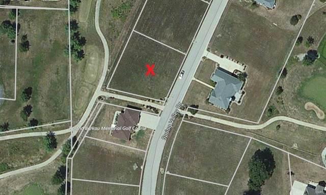 5 Spring Valley Drive, OKAWVILLE, IL 62271 (#21038367) :: Krista Hartmann Home Team