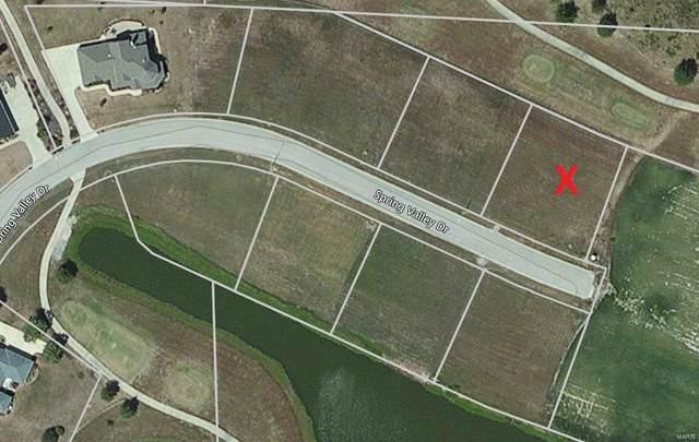 13 Spring Valley Drive, OKAWVILLE, IL 62271 (#21038368) :: Krista Hartmann Home Team