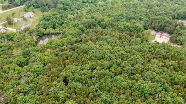 1008 Pine Grove Lane, Bonne Terre, MO 63628 (#21038514) :: Krista Hartmann Home Team