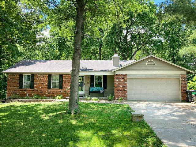 10 Donald Drive, Saint Charles, MO 63304 (#21039184) :: St. Louis Finest Homes Realty Group
