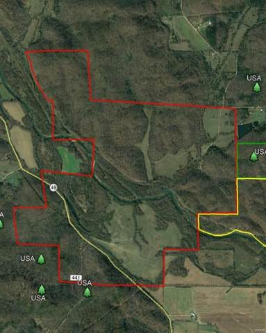 0 Hwy 49 And Cr 435, Mill Spring, MO 63952 (#21039948) :: Realty Executives, Fort Leonard Wood LLC
