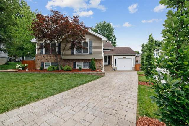 206 Cottage Avenue, Webster Groves, MO 63119 (#21040378) :: Clarity Street Realty