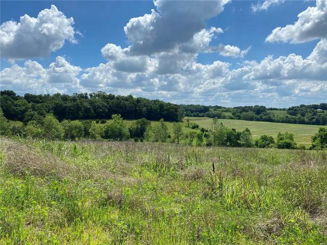 3 Lot 3 Redbird/Olive Rd Road, Unincorporated, MO 63068 (#21040725) :: RE/MAX Vision