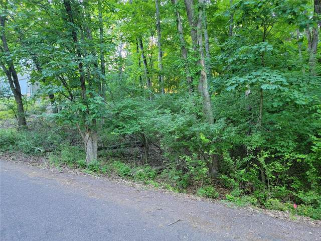 523 Friar Tuck Lane, Marthasville, MO 63357 (#21041131) :: Jeremy Schneider Real Estate