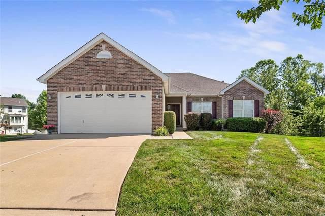 52 Logan Crossing Circle, O'Fallon, MO 63366 (#21041210) :: The Becky O'Neill Power Home Selling Team